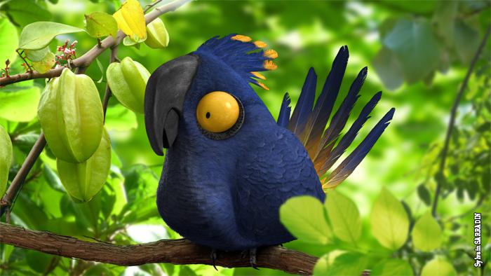 Drôle de perroquet